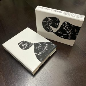 libro Lucio Muniain Pintura Música Arquitectura 02